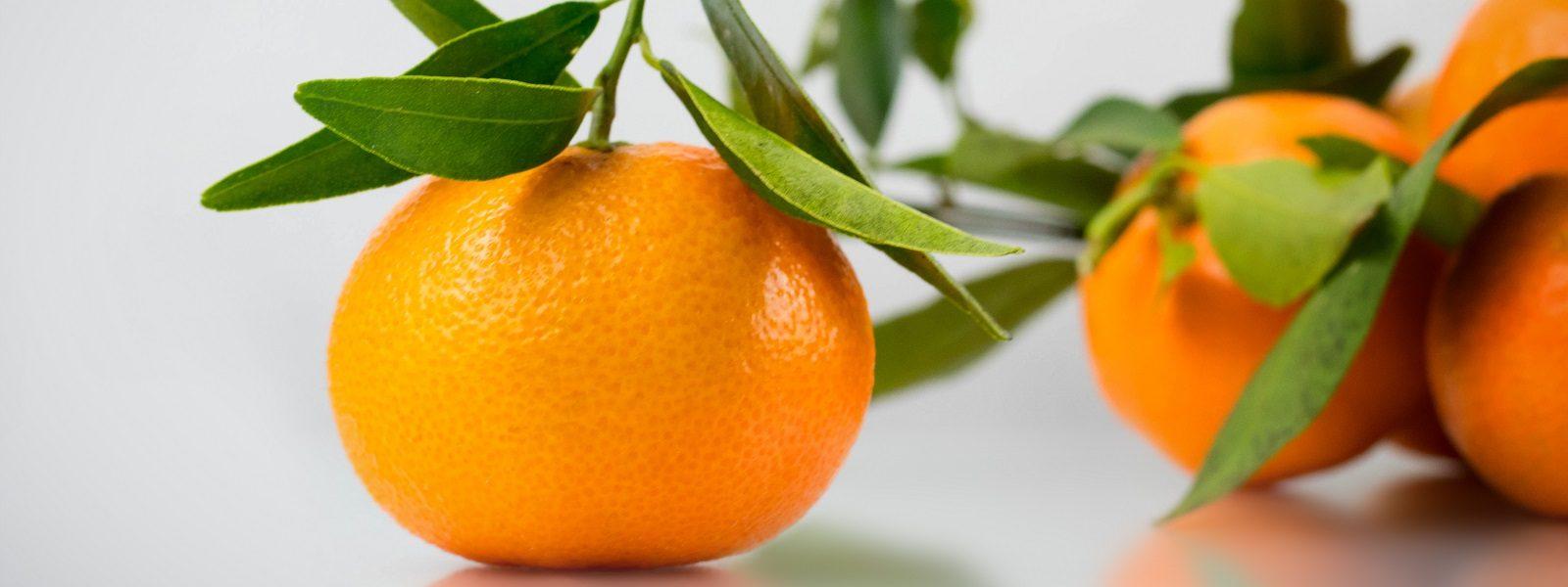 Sección Hortofrutícola